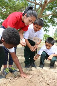 A Firsthand Look at Farming, Education and Women's Empowerment in Belize by Amy Lamb